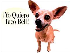 Taco Bell Slogans   RM.