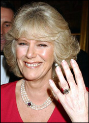 SGCollect.com Forums > Wedding of Prince Charles & Camilla - April 09