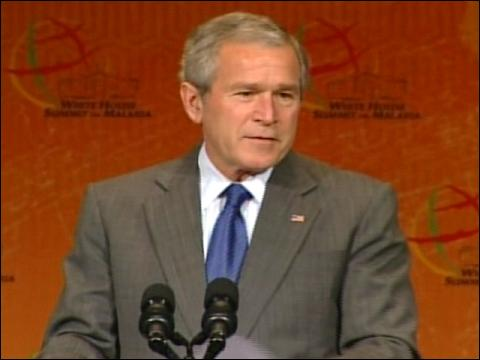 Bush Pledges To Fight Malaria