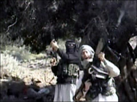 No Sign Of Defeat In Al Qaeda